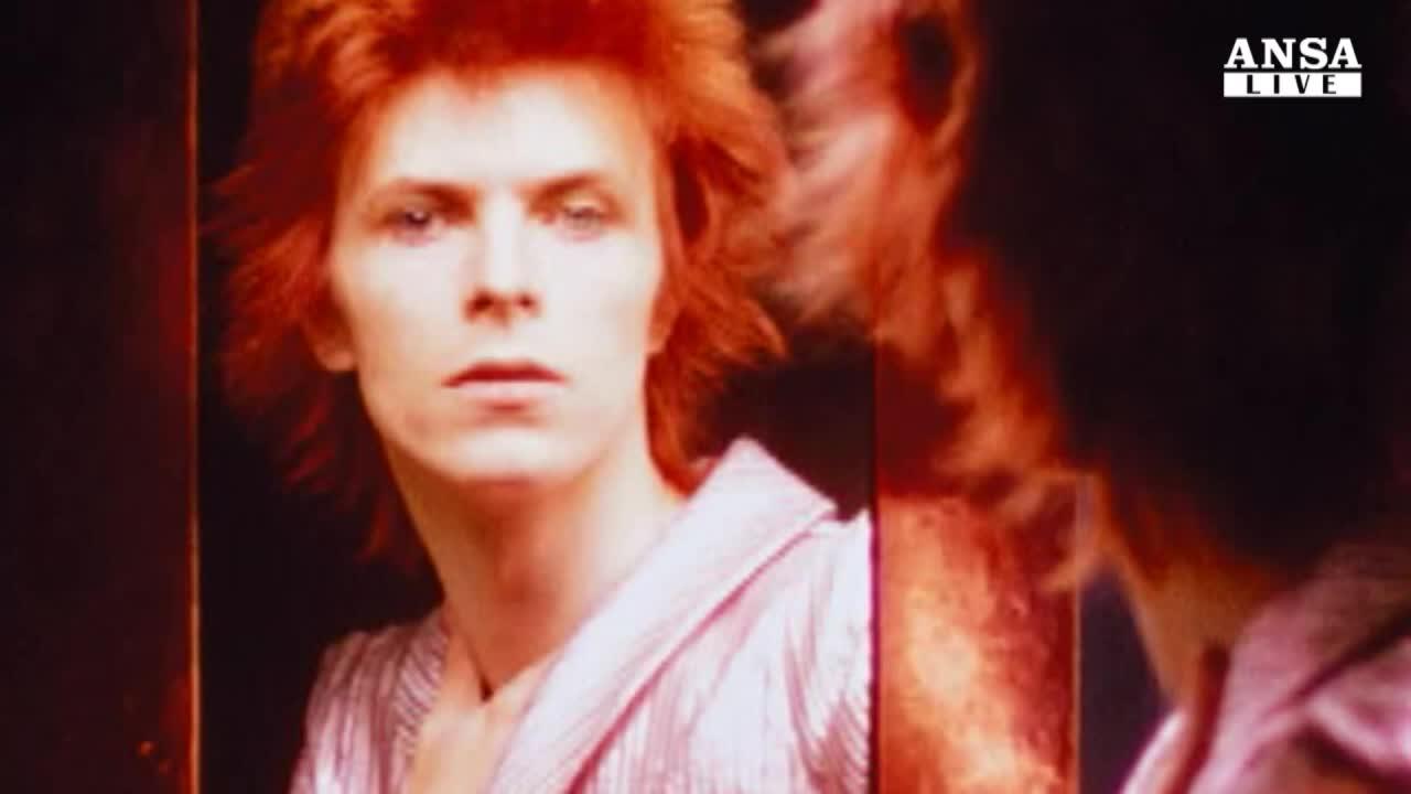 Bowie 39 allo specchio 39 per nothing has changed - Cavalli allo specchio ...