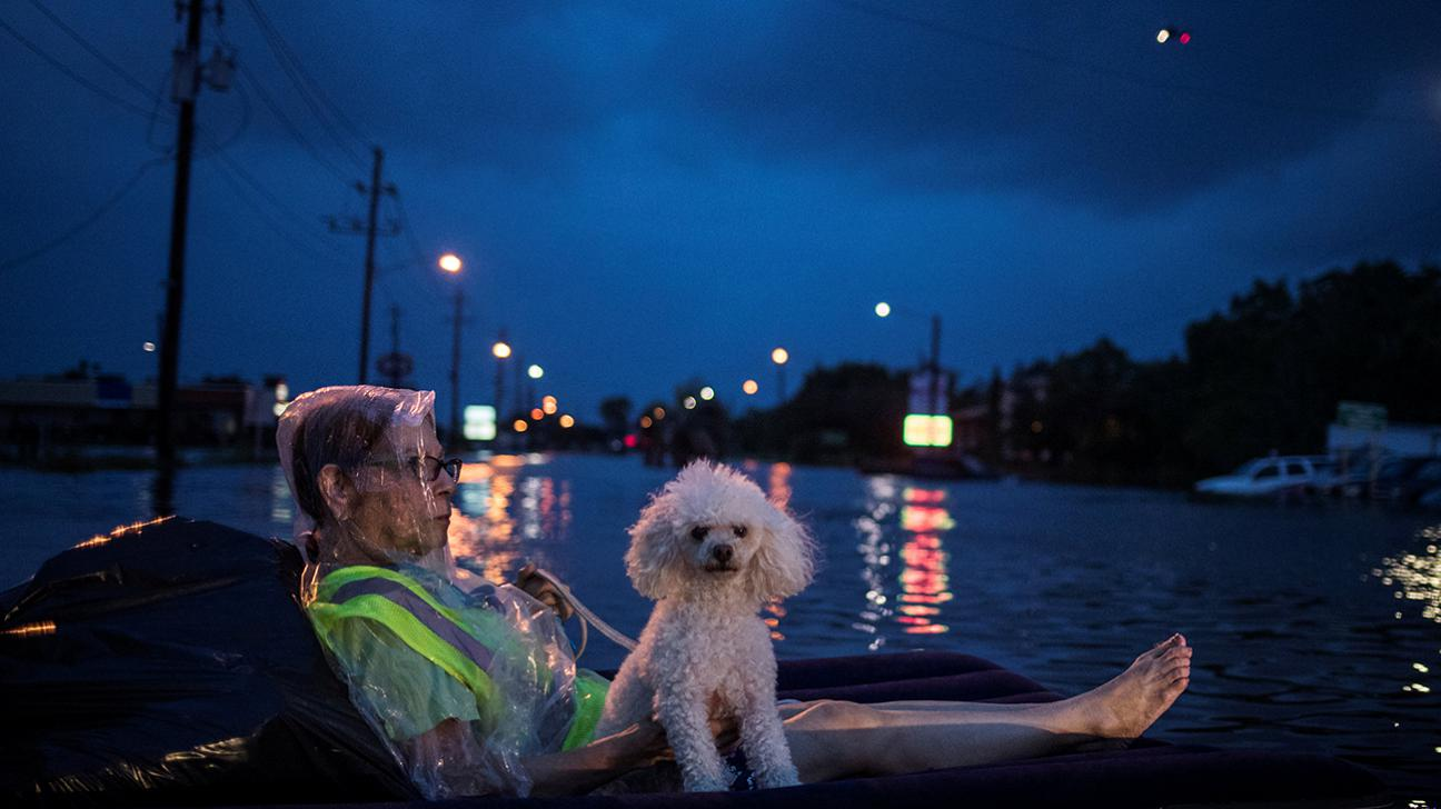 Houston devastated by deadly flooding from Harvey, more rain expected
