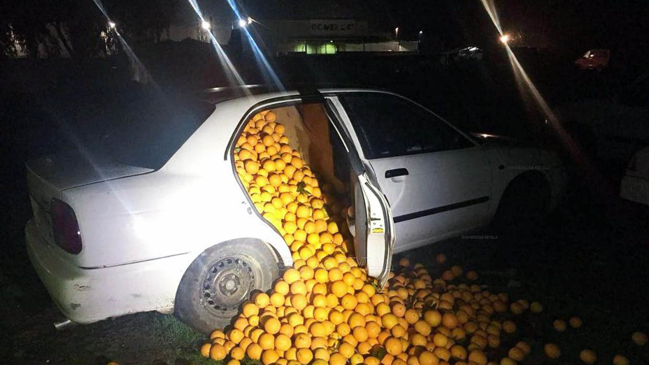 Thieves nabbed in juicy heist with 4 tons of Seville oranges
