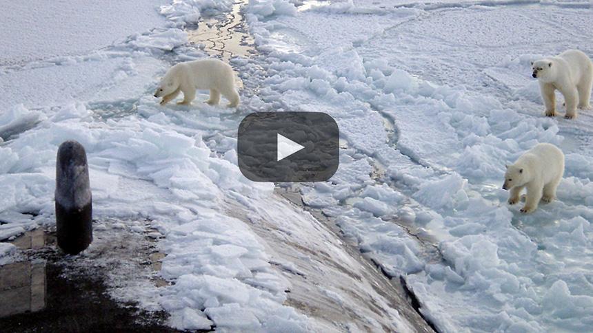 Residuos plásticos se acumulan en el Ártico