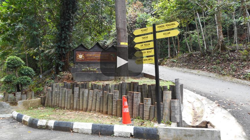 En Malasia, reserva forestal de Gunung Pulai una pareja fue encontrada