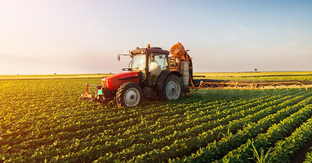 [video] Settore agroalimentare, volano dell'economia italiana