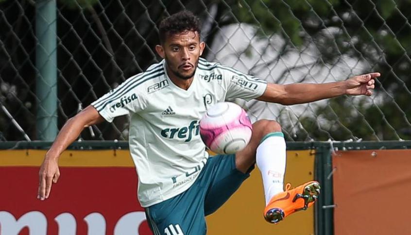 Advogado do Palmeiras fala sobre situação de Scarpa