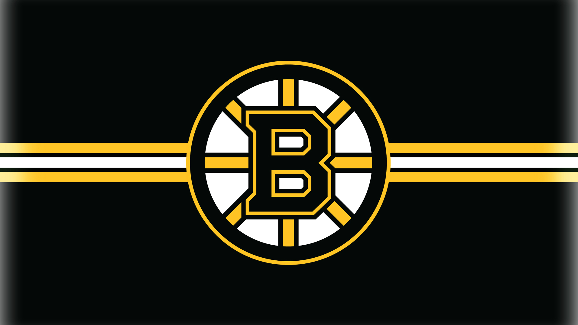 The Bruins: Road to the Stanley Cup