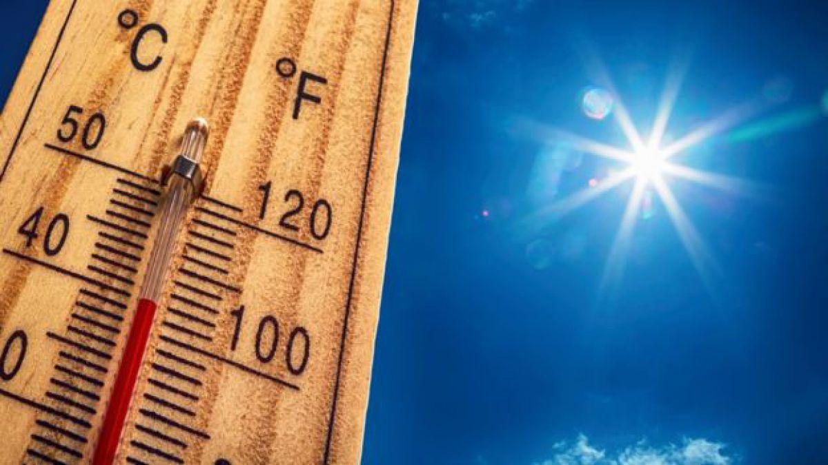 ¿Los días calurosos son menos avaros que el clima frió?