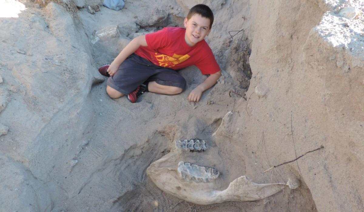 Niño encuentra un fósil en el desierto mexicano