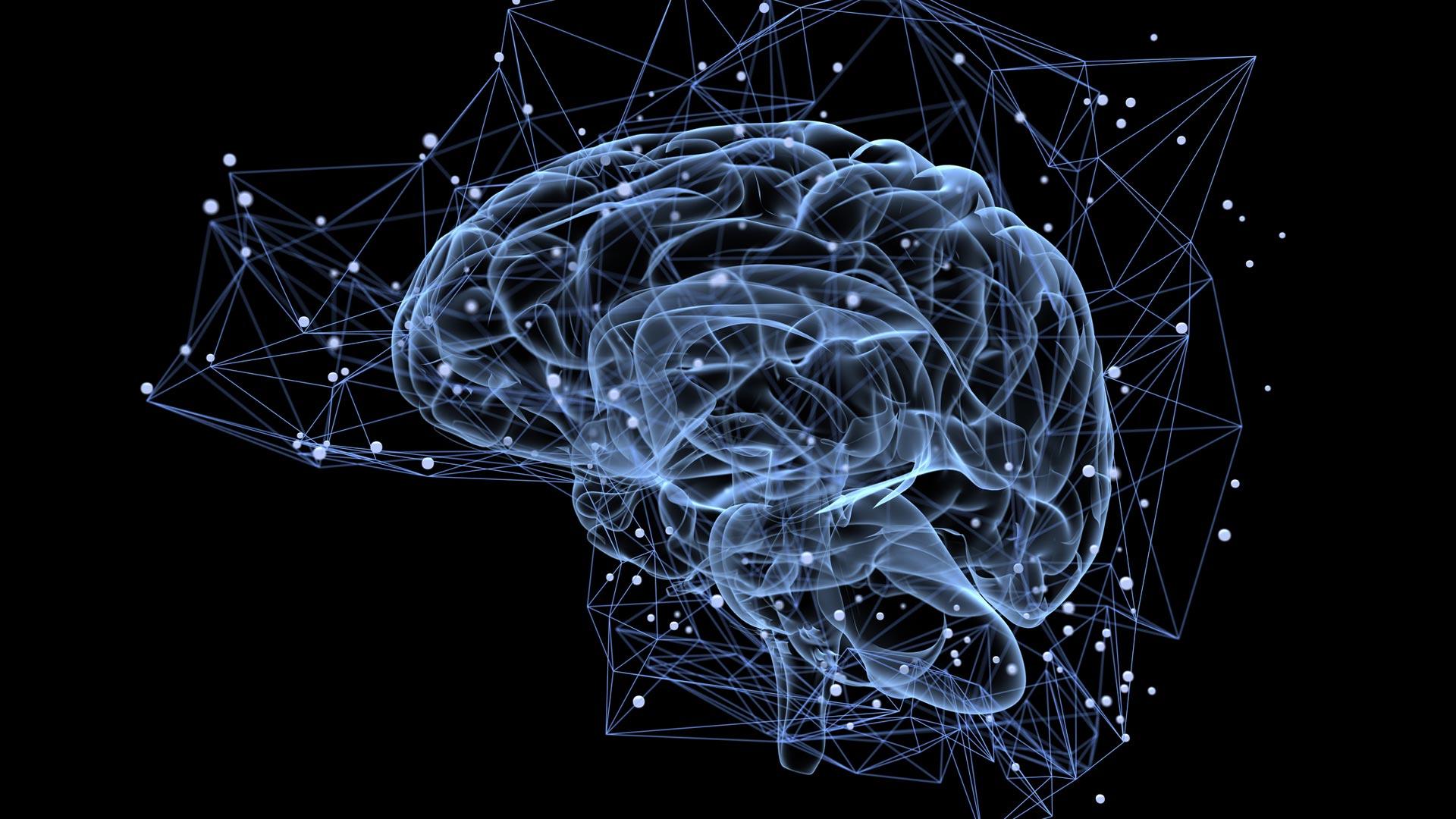 Si no duermes, las celulas de cerebro cambian