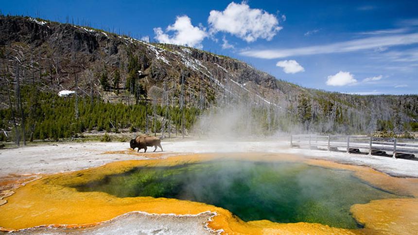 Un tercio de las reservas naturales del mundo están bajo amenaza de los humanos