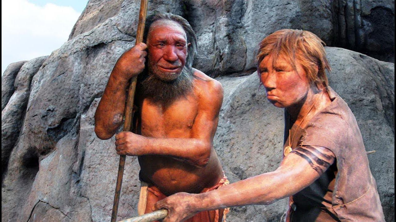 Crean mini-cerebros Neandertal para fines cientificos