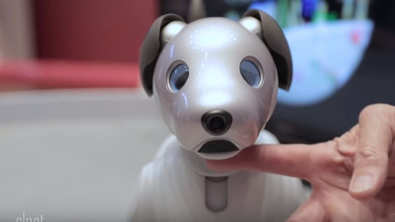 Sony is going to launch a new AI-based robotic dog in September