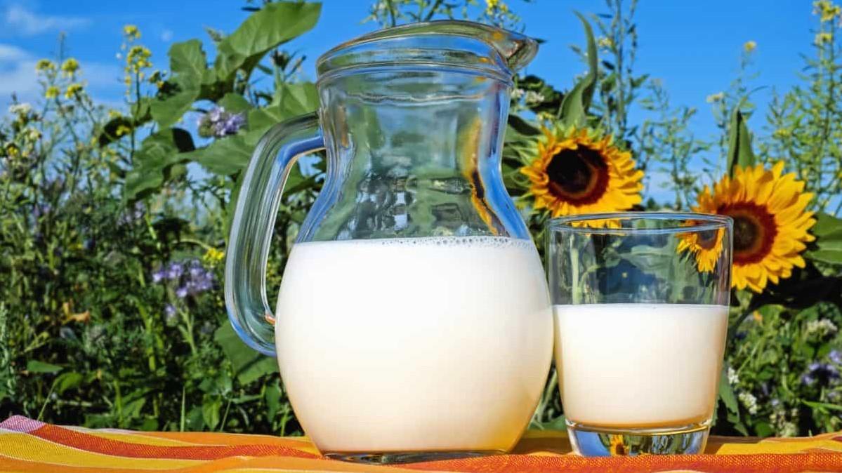 Latte intero, vero alleato della salute cardiovascolare