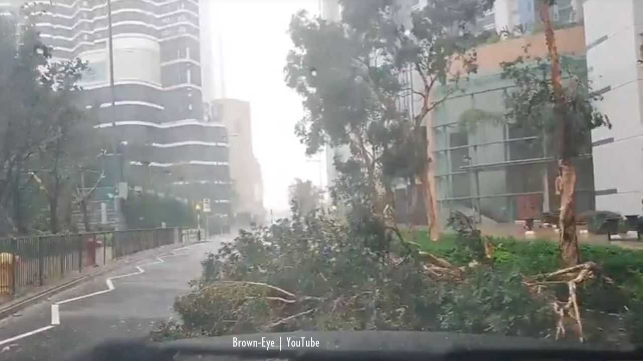 Super-Typhoon Mangkhut smashes windows, rips down trees in Hong Kong