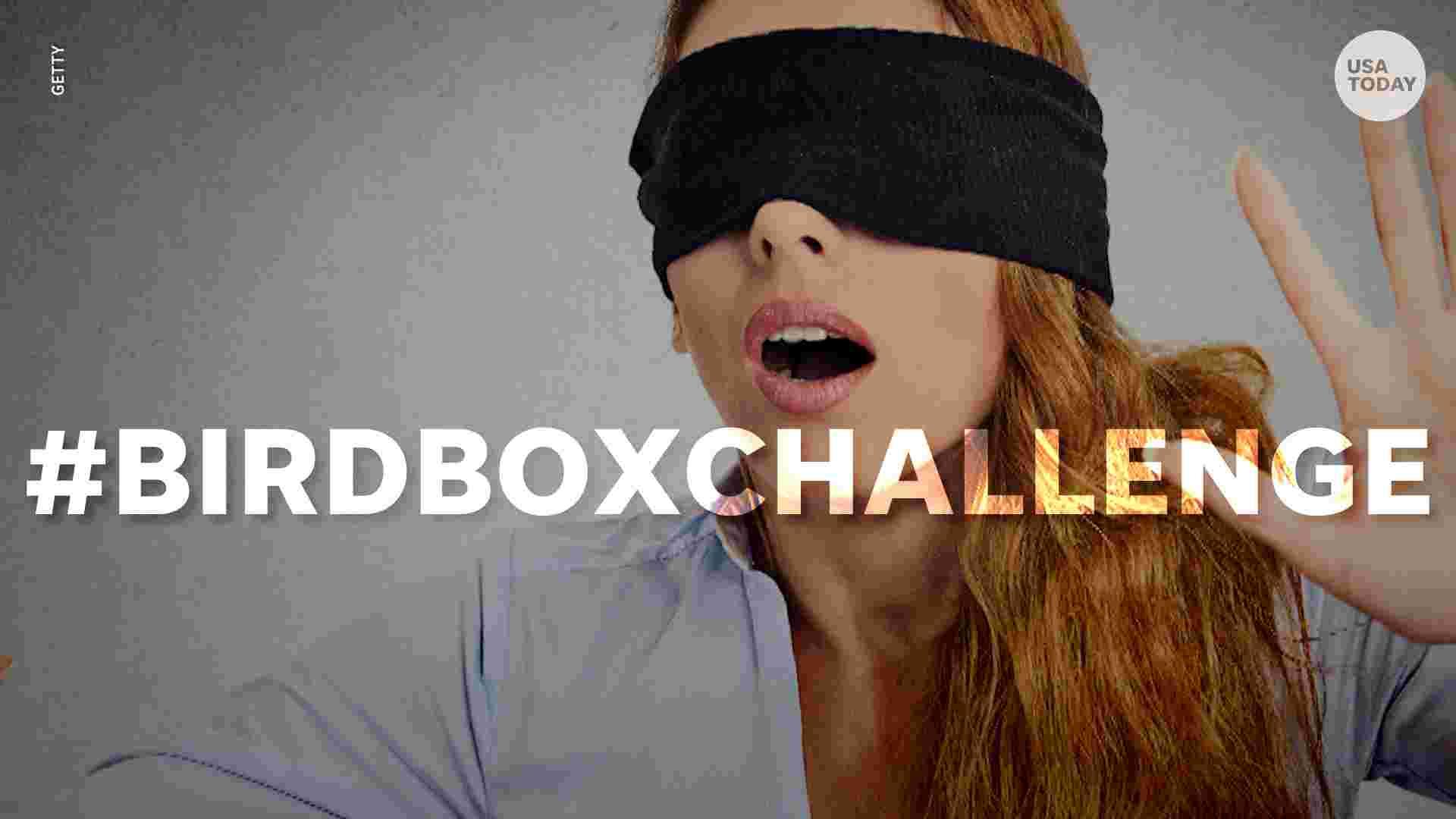 Le Bird Box Challenge, le nouveau jeu fou des internautes