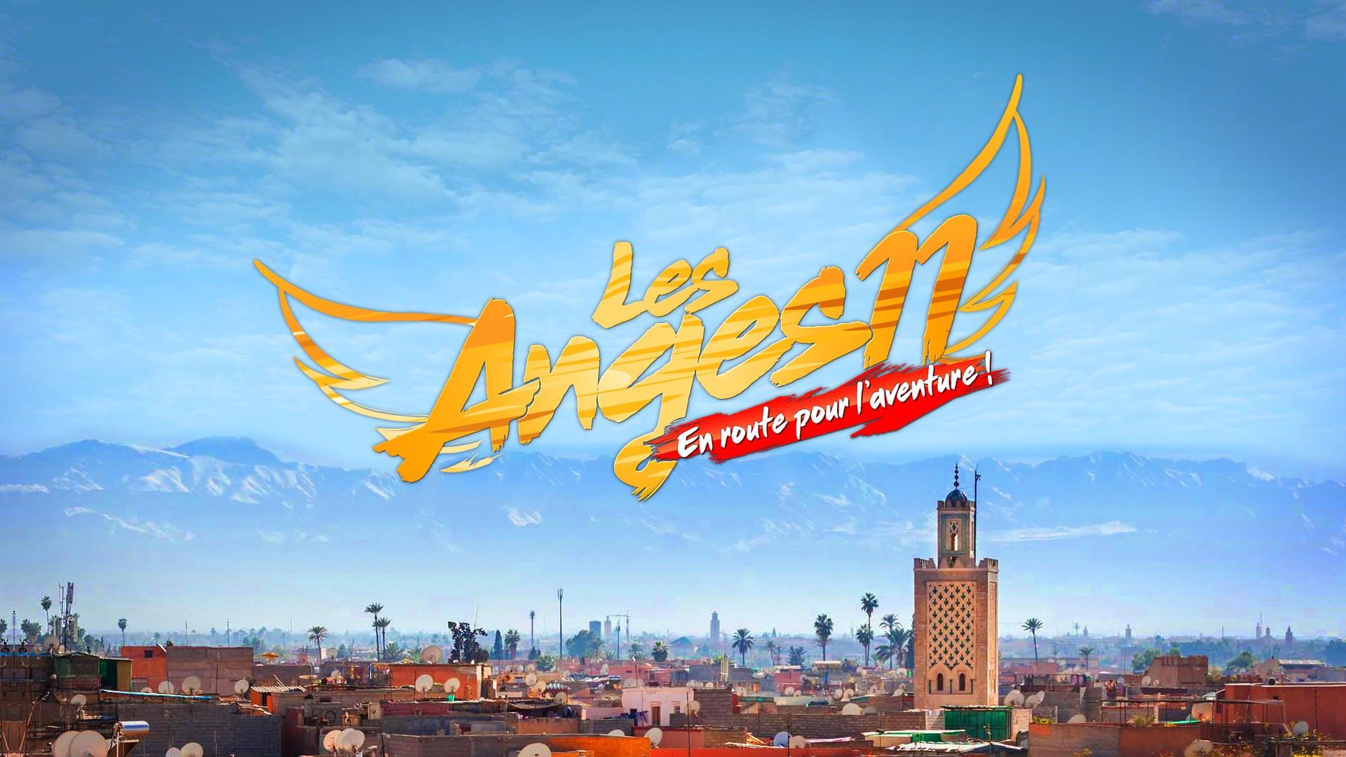 Les Anges 11 : l'aventure débute et les sentiments naissent