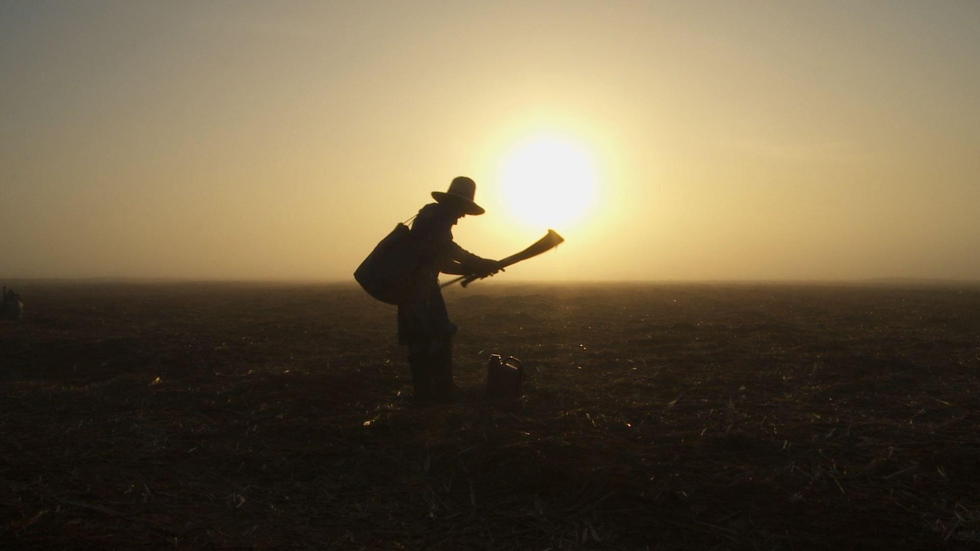 Trabalhador Rural terá que contribuir para se aposentar