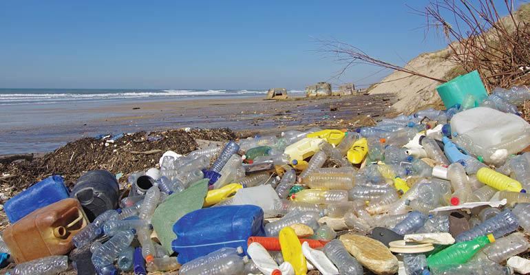 Early ocean plastic litter traced to 1960s