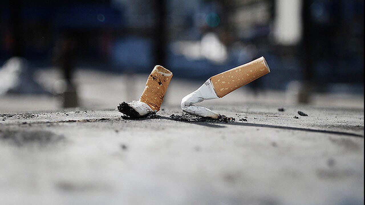 Notre-Dame: la ditta ammette che gli operai fumavano, ma non è la causa dell'incendio