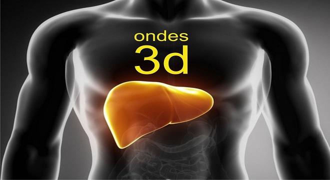 Un colorante facilita la impresión 3D de redes vasculares de pulmones e hígados