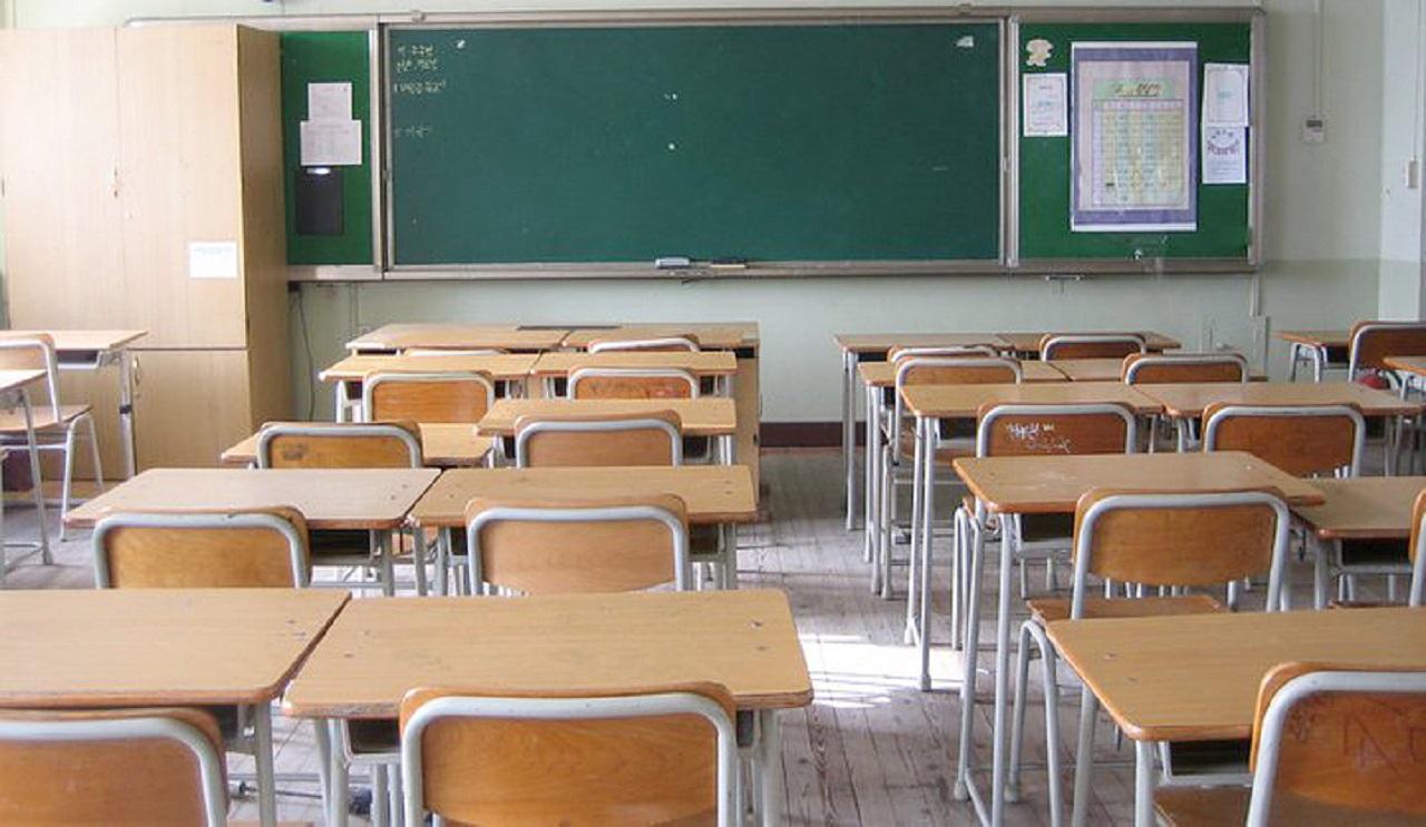 Gioia Tauro, bidello uccide gatto a bastonate davanti agli alunni di una scuola primaria