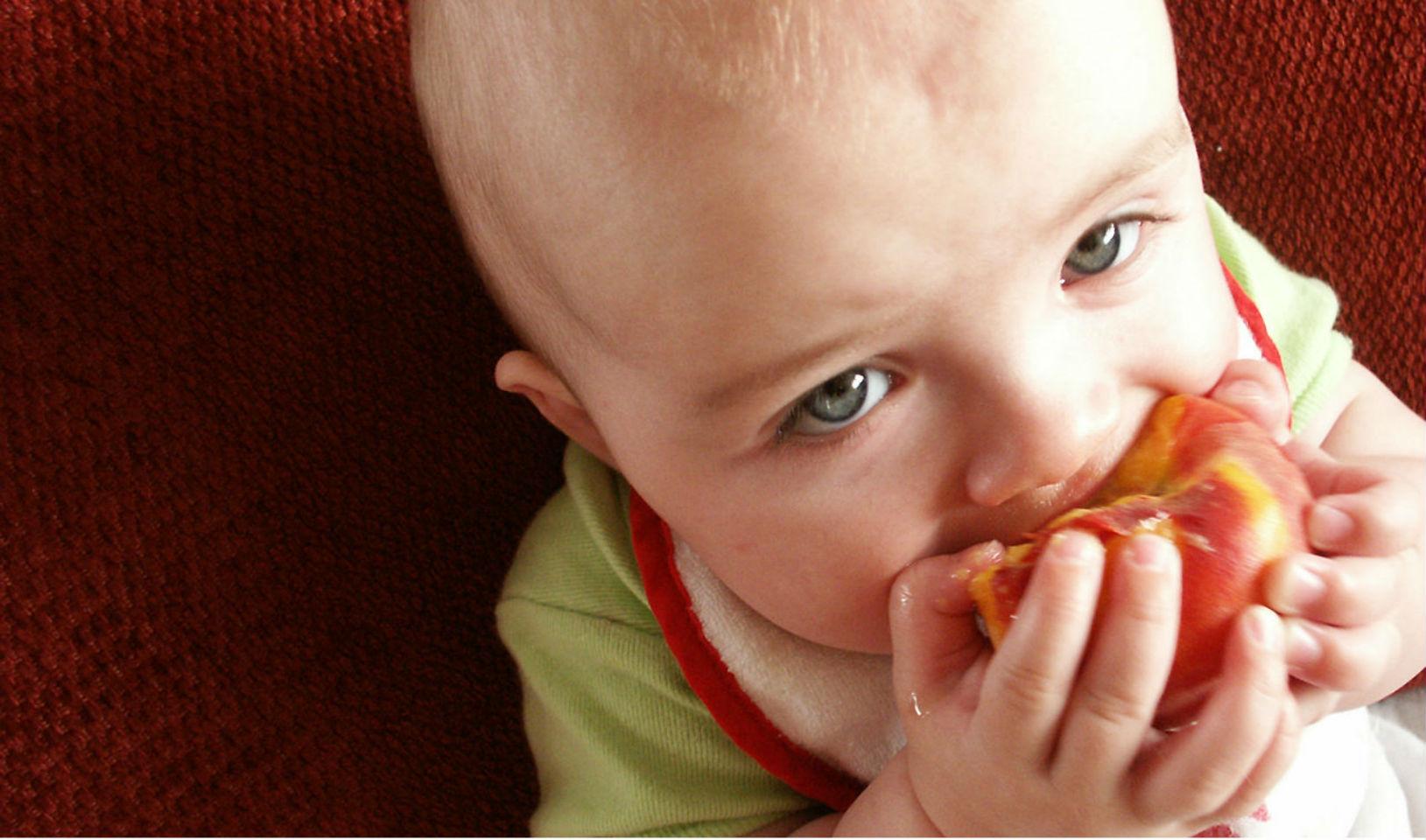 Dicas que vão ajudar o seu bebê a começar a comer normalmente
