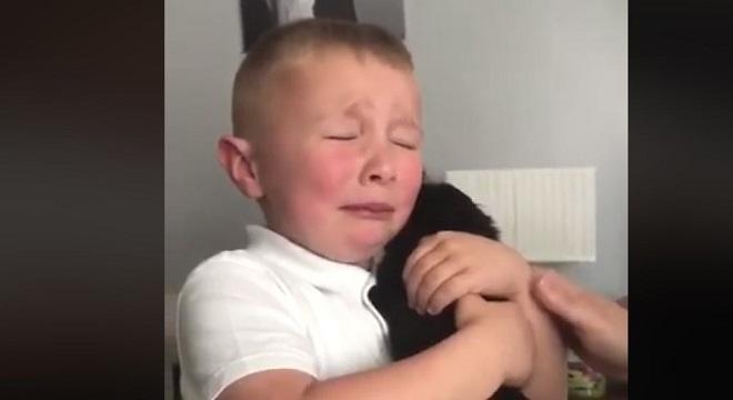 La emoción de un niño al conocer a su nueva mascota se vuelve viral en Gran Bretaña