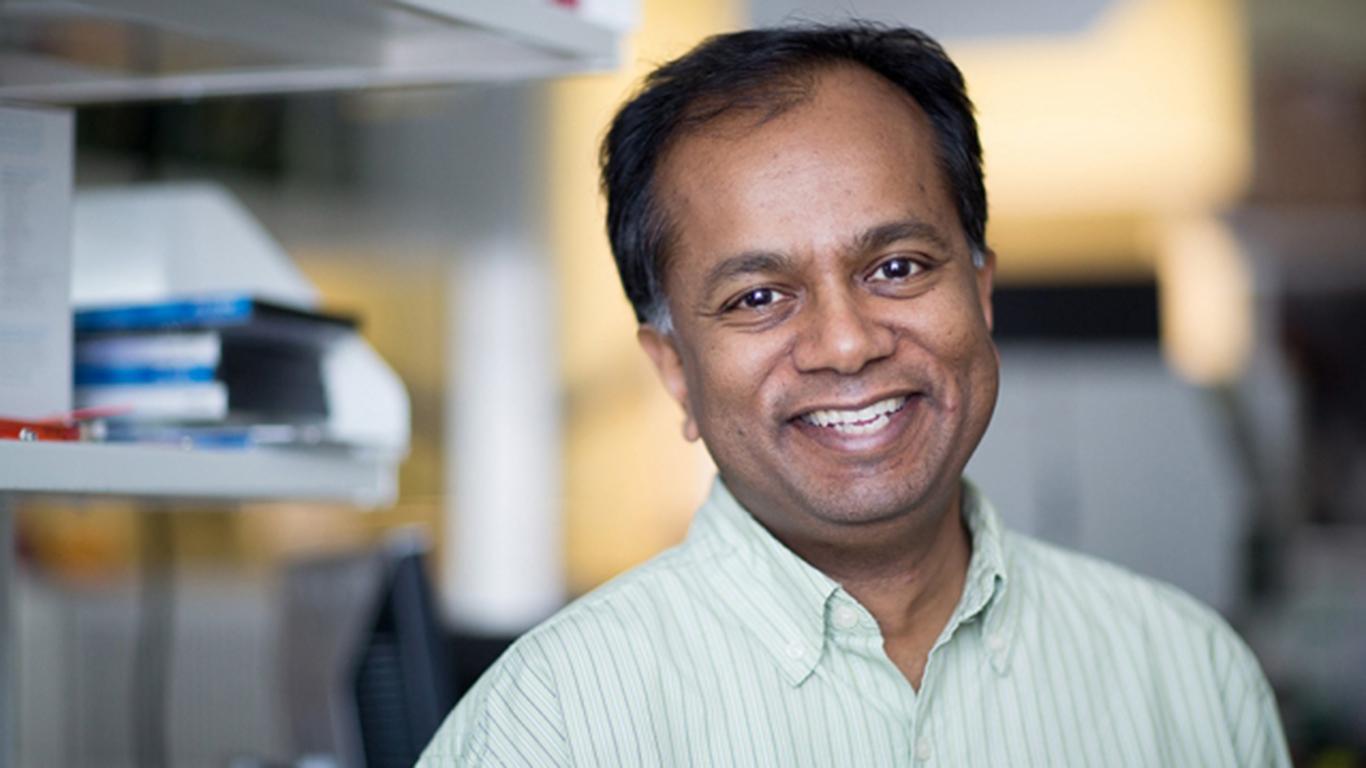 Usa, professore del MIT accusato di plagio per aver copiato farmaci già noti