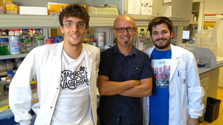 La UAB encuentra una molécula que podría ser una cura para el Parkinson