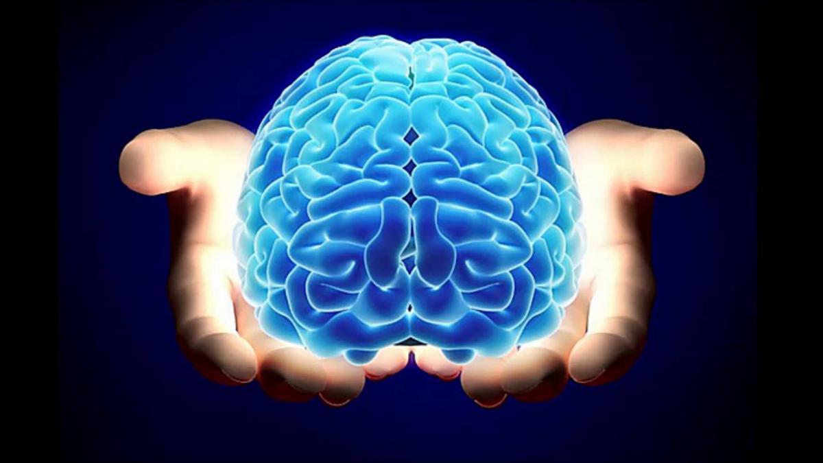 Encuentran una tenia en el cerebro de una mujer que iba a ser operada por un tumor