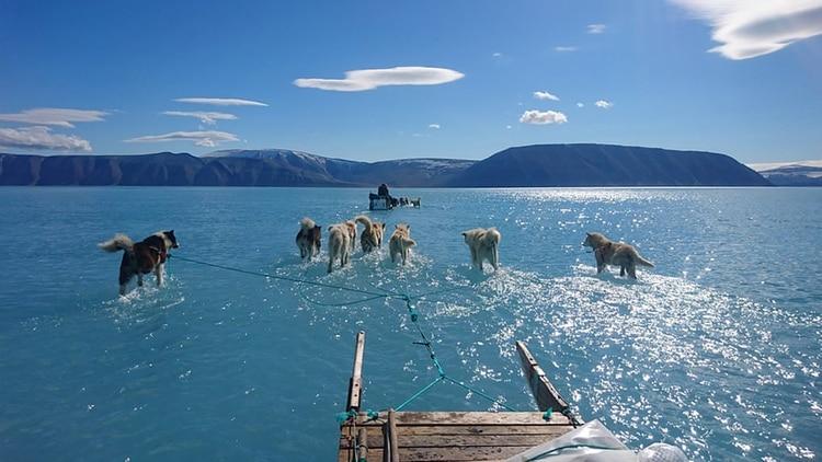El cambio climático en Groenlandia y sus graves consecuencias se ven en una foto