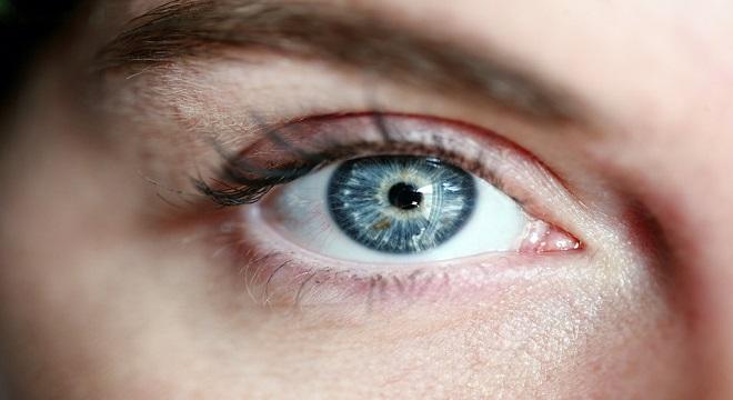 El ojo es el principal órgano de la vista