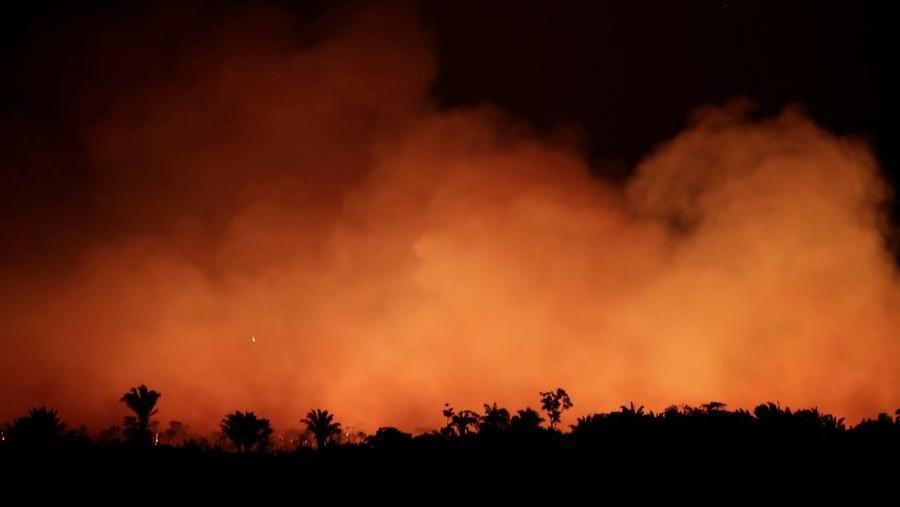 Amazzonia, la foresta brucia e il web si unisce sotto l'hashtag #PrayforAmazonas