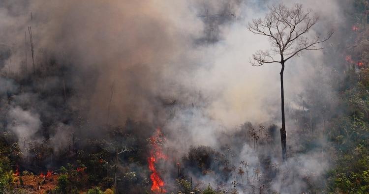 Los incendios en Europa serán tan devastadores como los del Amazonas según Marc Castellnou