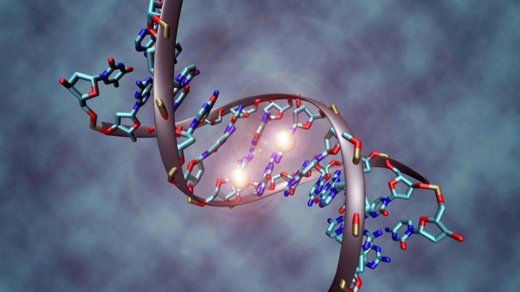 El gen gay es falso según un estudio del Laboratorio Europeo de Biología en Finlandia